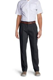 Men's Wrinkle-Free Classic Fit Pleated Casual