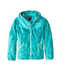 The North Face Oso Hoodie (Little Kids/Big Kids)