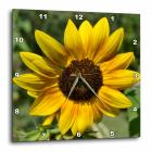 3dRose Colors of the Sun- Yellow Sunflowers- Flora