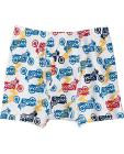 Boys Boxer Briefs In Organic Cotton