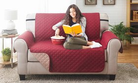 Reversible Furniture Protector for a Love Seat, So
