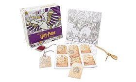 Harry Potter Winter at Hogwarts Magical Coloring S