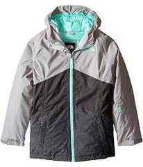 The North Face Brianna Insulated Jacket (Little Ki