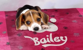 Up to 93% Off Custom Dog Blankets from Printerpix