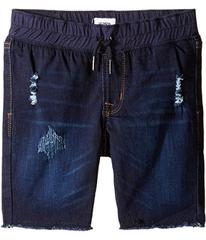 Hudson French Terry Pull-On Shorts in Power Blue (