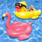 Flamingo and Derby Duck Swimming Pool Float, 2-Pac