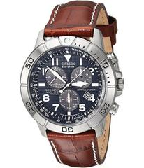 Citizen Watches BL5250-02L Eco-Drive Perpetual Cal
