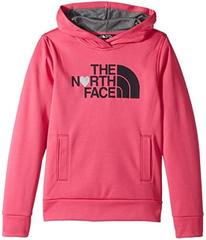 The North Face Kids Surgent Pullover Hoodie (Littl