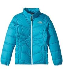 The North Face Kids Andes Down Jacket (Little Kids