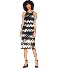 ROMEO & JULIET COUTURE Two-Toned Lace Stripe Dress