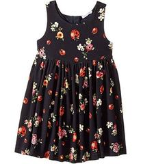 Dolce & Gabbana Back To School Floral Dress (Toddl