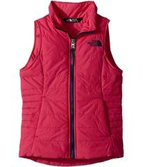 The North Face All Season Insulated Vest (Little K