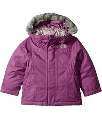 The North Face Greenland Down Parka (Toddler)