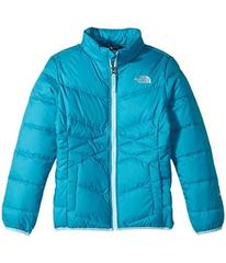 The North Face Andes Down Jacket (Little Kids/Big