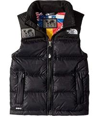The North Face International Collection Nuptse Ves