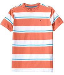 Tommy Hilfiger James Stripe Crew Tee (Toddler/Litt