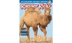 Up to 67% Off Ranger Rick Magazine Subscriptions