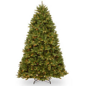 National Tree 9ft. Newberry® Spruce Tree with Clea