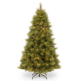 National Tree 7.5ft. Arcadia Pine Tree with Clear