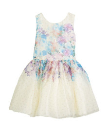 Zoe Ombré Floral Party Dress, Size 4-6X