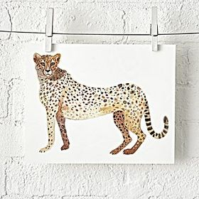 Cheetah Safari Unframed Wall Art