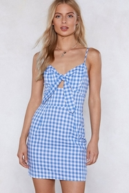 Walk in the Park Gingham Dress
