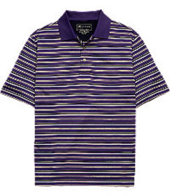 David Leadbetter Traditional Fit Stripe Short Slee