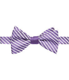 Executive Collection Stripe Self Tie Bow Tie CLEAR