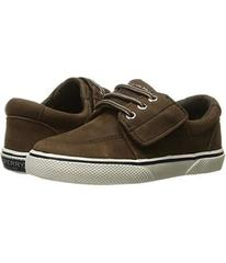 Sperry Ollie Jr. (Toddler/Little Kid)