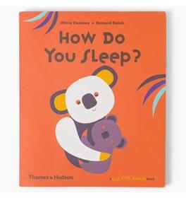 Flip Flap Pop-Up Book: How Do You Sleep?