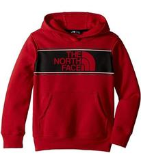 The North Face Logowear Pullover Hoodie (Little Ki