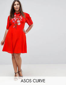 ASOS Curve Chinoiserie Embroidered Mini Dress