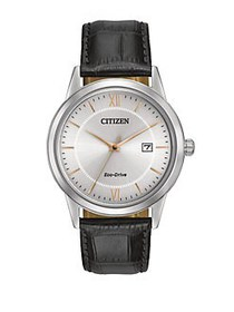 Citizen Men s Eco-Drive Stainless Steel and Leathe