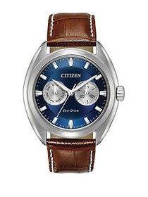 Citizen Paradex Eco-Drive Stainless Steel Analog L