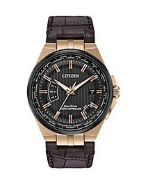 Citizen World Perpetual A-T Stainless Steel and Le
