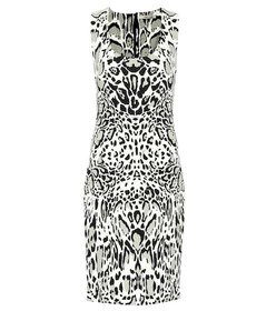 Roberto Cavalli Printed stretch crêpe dress