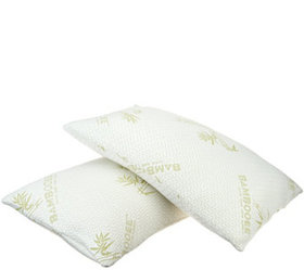 """""""As Is"""" S/2 Queen Memory Foam Pillows w/ Rayon Mad"""