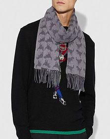 Coach graphic rexy scarf