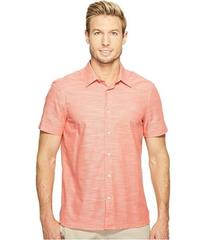 Perry Ellis Spiced Coral