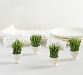 Pottery Barn Grass Place Card Holder, Set of 4