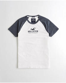 Hollister Muscle Fit Colorblock Graphic Tee, HEATH