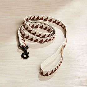 "Crate Barrel Nice Grill 1"" Caramel Brown Leash"