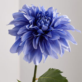 Crate Barrel Blue Dahlia Flower Stem