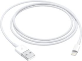 Apple - 3.3' Lightning to USB Cable - White
