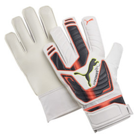 Puma evoPOWER Grip 4 Goalkeeper Gloves