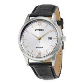 CitizenEco-Drive Silver Dial Black Leather Men's W