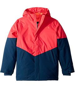 The North Face Kids Brianna Insulated Jacket (Litt
