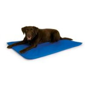 Cool Blue Pet Bed III, Large
