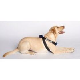 Blue Canine Travel Safe Harness, Small 1