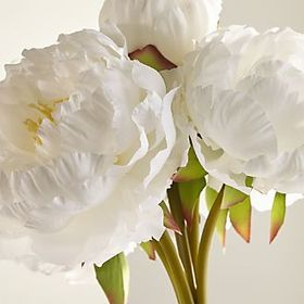 Crate Barrel New White Peony Bunch